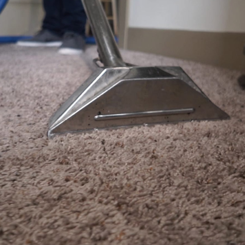 Carpet Cleaning Steaming pic