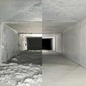 Quality insulation services